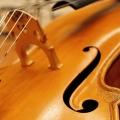 preistraegerkonzert_viola_trompete_klarinette_19