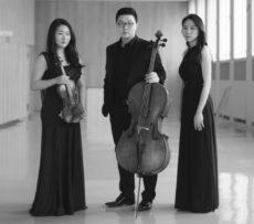 KT_Lux Trio