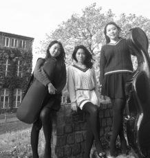 KT_Trio Peony