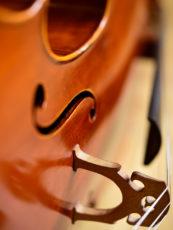 Symbolfoto Violoncello, © Urban Ruths